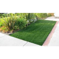 NewGrass | NewGrass Majestic Regal Artificial Grass Lawn 5' x 10' Roll (50 sq.ft.) | Home Depot Canada
