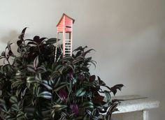 Rosie's House of the Cottage Town collection by Ontwerpduo and plant Zebrina Pendula