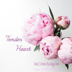 Tender Heart – One Stone Away…