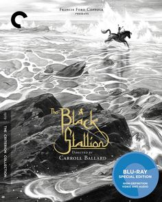 The Black Stallion - Blu-Ray (Criterion Region A) Release Date: July 14, 2015 (Amazon U.S.)