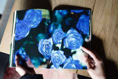 THE LITTLE BOOKS 01 | THE LITTLE SHOP OF FLOWERS