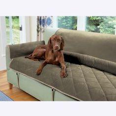 die besten 25 pet couch cover ideen auf pinterest schonbez ge f r sofas hussen und. Black Bedroom Furniture Sets. Home Design Ideas