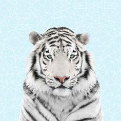 Tiger (Paneelstof sweater)