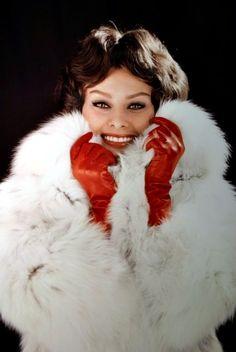 "filmloversareverysickpeople: ""Sophia Loren"""