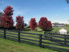 The type of fence you choose will play a key role in your home's exterior design. See the different types of fences, including types of privacy fences. Farm Gate, Farm Fence, Fence Landscaping, Backyard Fences, Yard Fencing, Fence Design, Garden Design, House Design, Kentucky Horse Farms