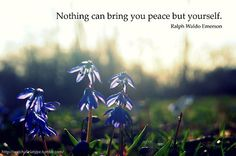 you bring peace to yourself