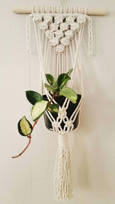 "Wall Plant Hanger ""Macadamia Nut"" # diy Macrame Plant Hanger # Macrame Plant Hanger tutorial # Macrame Plant Hanger how to make Plant Hanger diy tutorial Plant Hanger pattern diy Macrame Plant Holder, Macrame Plant Hangers, Plant Holders, Wall Plant Hanger, Plant Wall, Hanging Plants Outdoor, Plants Indoor, Diy Fleur, Macrame Projects"