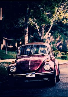 VW Beetle looks like my first vw car