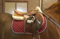 The most important role of equestrian clothing is for security Although horses can be trained they can be unforeseeable when provoked. Riders are susceptible while riding and handling horses, espec… Horse Riding Clothes, Riding Hats, Equestrian Outfits, Equestrian Style, Equestrian Fashion, English Horse Tack, English Saddle, Horse Gear, Saddle Pads
