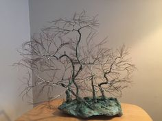 This is the chance to experience trees in a new way. Winter is the best time of the year to see the actual branches and trunk of the tree - without the leafy covering Peace Art, Miniature Trees, One Tree, Wabi Sabi, Recycled Materials, Copper Wire, Bonsai, Sculpture Art, Recycling