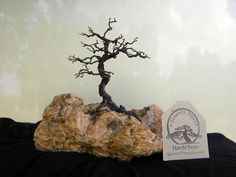 Wire Tree Twisted on Feldspar by SerenityTrees on Etsy, $56.00
