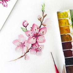 19 Trendy Ideas For Painting Acrylic Galaxy Artists Art Floral, Motif Floral, Watercolor Cards, Watercolor Flowers, Watercolor Paintings, Watercolor Drawing, Plant Drawing, Painting & Drawing, Art Sketches