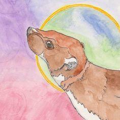 Least Weasel - Sara Croft