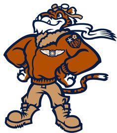 Class A-Advanced Florida State League. Minor League Baseball, Baseball Teams, Furry Art, School Design, Team Logo, Sports Logos, Man Cave, Florida, Cartoon