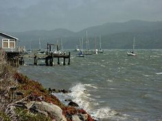 Choppy waters on Tomales Bay