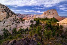Northgate Peaks Trail photo (Zion National Park) -- © 2013 Joe Braun Photography