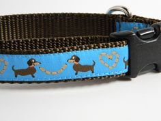 Dashund Love Dog Collar