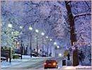 Streetlamps light a winter passage past frosty branches on Unioninkatu.