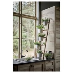 IKEA Plant stand with 5 plant pots Bamboo/white: decoration / plants-pots-stands A decorative ladder plant stand allows you to grow several plants together vertically – perfect if you like plants but live in a small space. Small Potted Plants, White Plants, Indoor Plants, Indoor Gardening, Vegetable Gardening, Egress Window, Kitchen Plants, Decoration Plante, House With Porch