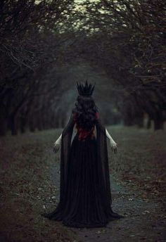 1 Fantasy Magic Fairytale Surreal Myths Legends Stories Dreams Adventures The Dark Queen Foto Fantasy, Fantasy Art, Fantasy Queen, Fantasy Forest, Dark Queen, Red Queen, Queen Mary, Dark Photography, Fairy Tale Photography