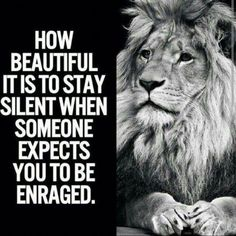 56 Short Inspirational Quotes That Will Inspire Yo. - 56 Short Inspirational Quotes That Will Inspire Yo… – - Short Inspirational Quotes, Great Quotes, Motivational Quotes, Pics With Quotes, Quotes With Lions, Wisdom Quotes, True Quotes, Quotes To Live By, Inspire Quotes