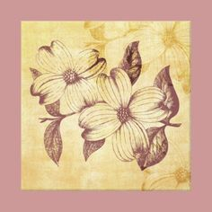 Vintage Dogwood Flowers canvas by joacreations