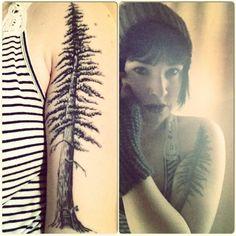 My tattoo! Coastal redwood with hobbit door. Look but don't copy ;) art by matt decker at premium tattoo in Oakland