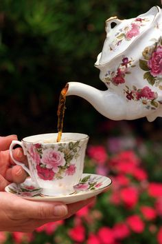 Have a cup of Tea!