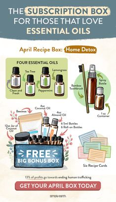 The Original Essential Oil Recipe Box Tea Tree Essential Oil, Essential Oil Uses, Young Living Essential Oils, Essential Oil Diffuser, Oil Recipe, Recipe Box, Essential Oil Companies, Roll On Bottles, Diffuser Recipes