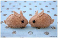 Cute brown bunnies