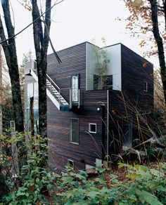 Nice siding and external roof stair. Also cutout garden.