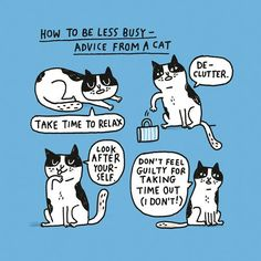 9 comics about the busyness of everyday life, including cat advice (naturally).