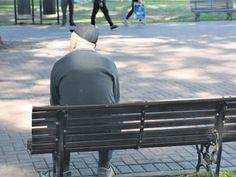 Un estudio del Observatorio de la Deuda Social de la UCA determinó el grado de vulnerabilidad que sufren los mayores de 60 años por inseguridad alimentaria. Radiografía de un segmento social amenazado por el hambre. El 37,8 por ciento de las personas mayores de 60 años padece insuficiencia de ingresos. Además, el 11,2 por ciento …