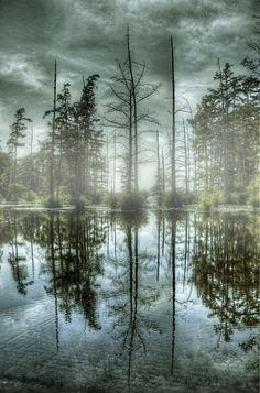 ~~Foggy Lake ~ Lake Conway, Mayflower, Arkansas by joelht74~~