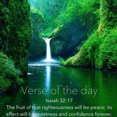 Verse of the day: Isaiah 32:17 The fruit of that righteousness will be peace; its effect will be quietness and confidence forever. #verseoftheday