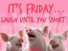 Friday pigs