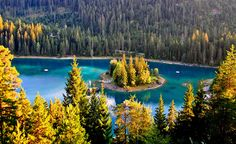 Caumasee, Flims by saendu, via Flickr Places Around The World, Oh The Places You'll Go, Places Ive Been, Around The Worlds, Planet Earth, My Dream, Switzerland, The Good Place, Planets