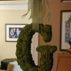 cute, easy, and cheap thanks to Dollar tree moss!!! could be done as a wreath as well, just let me know