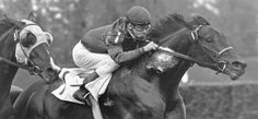 Iron Liege - Iron Liege won the Derby in 1957 with a time of Kentucky Horse Park, Kentucky Derby, The Belmont Stakes, Derby Horse, Derby Winners, Horse Anatomy, Sport Of Kings, Thoroughbred Horse, Racehorse