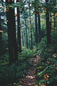 Pastel Nature