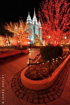 Temple Square, Salt Lake City, Utah Just like DC - gotta love the LDS Christmas lights! Mormon Temples, Lds Temples, Holiday Lights, Christmas Lights, Lds Temple Pictures, Temple Square, Salt Lake City Utah, City Lights, Places To Go