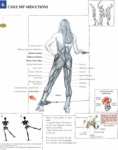 The Anatomy of The Upright Row Workout. The upright row is a weight training exercise performed by holding a grips with the overhand grip and lifting it str Gluteal Muscles, Bodybuilding, Nutrition Sportive, Latissimus Dorsi, Muscle Anatomy, Butt Workout, Workout Fitness, Weight Training, Yoga Fitness