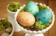 Easter eggs.  I love the speckles!
