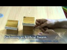 How to perform an artificial swarm - Hive splitting