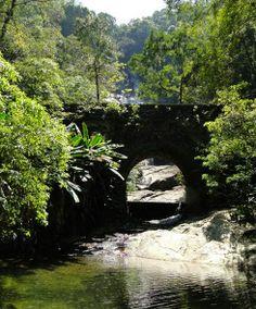 Tijuca Forest National Park - Rio de Janeiro