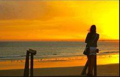 Mutluluğun en güzel ifadasi susmaktır. Ne kadar mutlu olduğunu anlatıp duran insan çok da mutlu olamaz.''