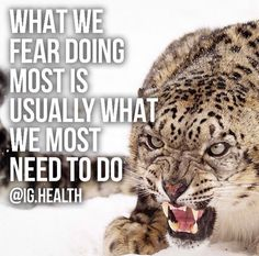 What we fear most is usually the thing we need to do most. Tiger Quotes, Truth Quotes, Inspirational Quotes, Truths, Life Coach Quotes, Inspiring Quotes, Quotes Inspirational, Inspirational Quotes About, True Quotes