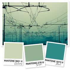 9 best double complementary images bathrooms decor bed - Sage green complementary colors ...