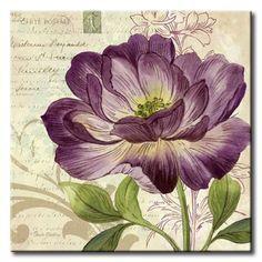 GlA_576_Study in Purple II / Cuadro Flores, Flor lila sobre fondo Vintage