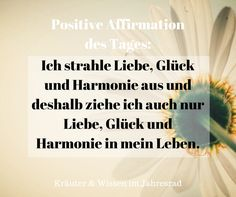 Positive affirmations and motivational sayings for every day you will find on herbs & knowledge in the Jahresrad. A smile every day brings light to the world – Yoga Expert